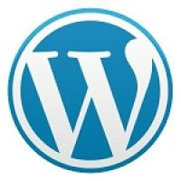 Problems with Custom WordPress Sites