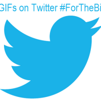 Are GIFs on Twitter For The Birds?