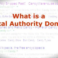 What is a Topical Authority Domain?