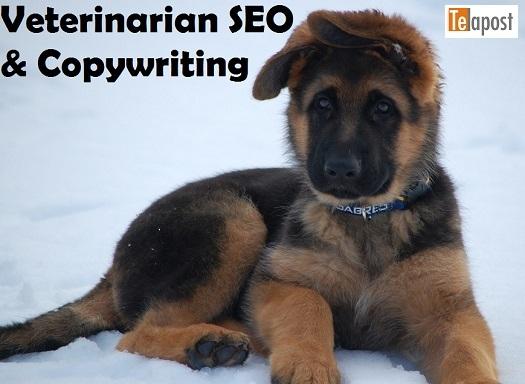 vet-puppy SEO
