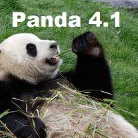 SEO News: Panda 4.1 Released
