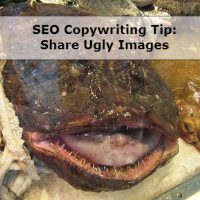 SEO Copywriting & Content Tip: Include & Optimize Images