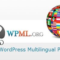 The SEO Value of Multilingual Content