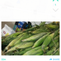 Yik Yak Now Allows Pics