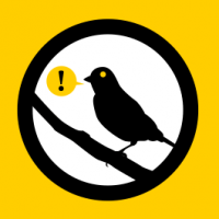What Happened to Reddit's Warrant Canary?