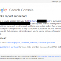 Does Google Act on Paid Link Spam Reports?