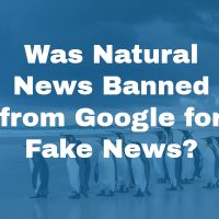 Was Natural News Banned from Google for Fake News?