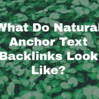 What Do Natural Anchor Text Backlinks Look Like?
