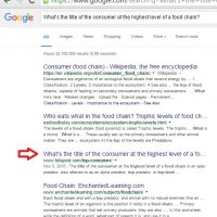 Improving Content for Better SEO and Google Rankings [Case Study]